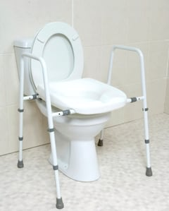 heavy duty toilet seat and frame